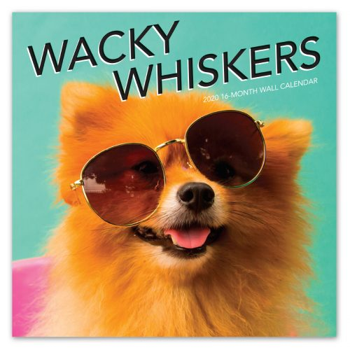 Wacky Whiskers Wall Calendar -Front